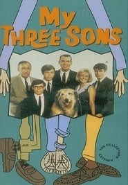 My Three Sons streaming vf poster
