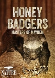 Honey Badgers: Masters of Mayhem