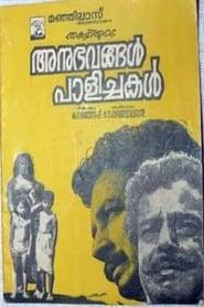 അനുഭവങ്ങൾ പാളിച്ചകൾ 1971