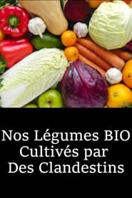 Nos Légumes BIO Cultivés par Des Clandestins (2021)