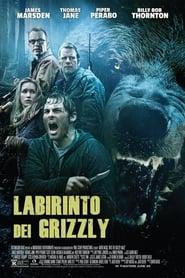 Labirinto dei Grizzly (2015)