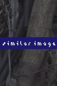 Similar Image (2021)