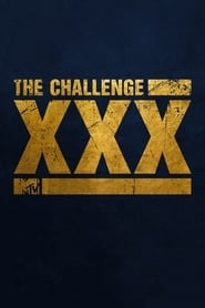 The Challenge - XXX: Dirty Thirty poster