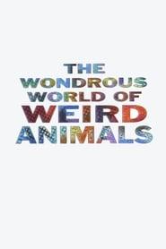 The Wondrous World of Weird Animals 1993