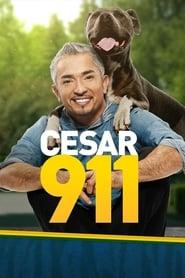 Cesar 911 2014