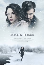 Killer Secrets in the Snow (2020)