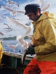 The Shetland Experience 1977