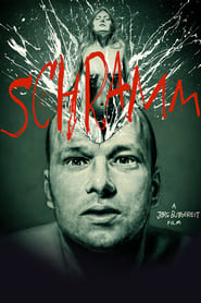 Schramm (1993)