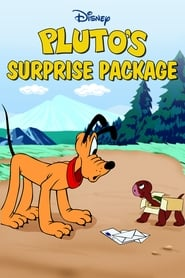 Pluto's Surprise Package (1949)