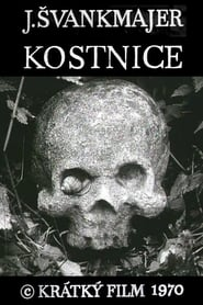 DVD cover image for Kostnice  ( The ossuary and other tales)