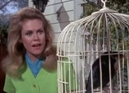 """Bewitched"" Tabitha's Weekend"