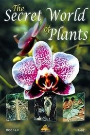 The Secret World of Plants (2003) Zalukaj Online Lektor PL