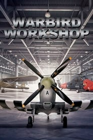 Warbird Workshop 2020