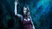 True Blood en streaming