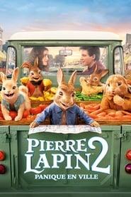 Pierre Lapin 2 : Panique en ville streaming vf