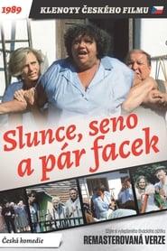 Slunce, seno a pár facek (1989)