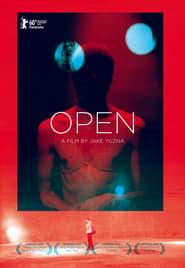 Open (2011)