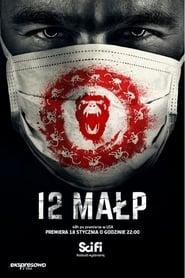 12 Małp online