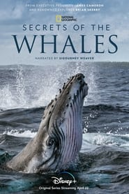 Secrets of the Whales 2021