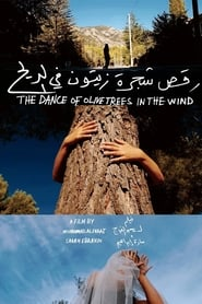 The Dance of Olive Trees in the Wind