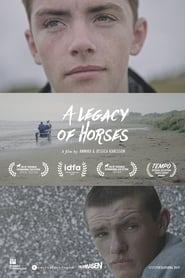 A Legacy of Horses