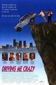 Driving Me Crazy (1991)