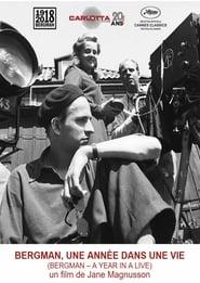 Bergman – A Year in Life (2018)