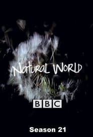 Natural World Season 21