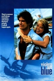 Watch Violets Are Blue… (1986) Fmovies