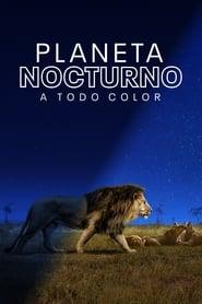 Earth at Night in Color (2020) | Planeta nocturno: a todo color