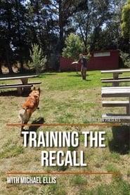 Training the Recall