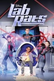Lab Rats – Copiii bionici Sezonul 2 Episodul 12