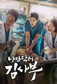 Romantic Doctor, Teacher Kim (2016)