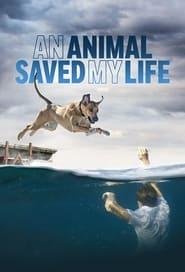 An Animal Saved My Life torrent