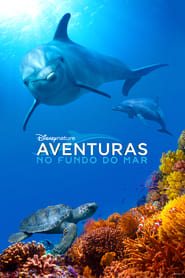 Dolphin Reef -Aventuras no Fundo do Mar