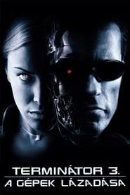 Terminátor 3. – A gépek lázadása