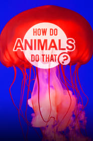 How Do Animals Do That?