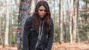 Captura de Pyewacket