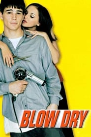 Blow Dry (2001) Watch Online in HD
