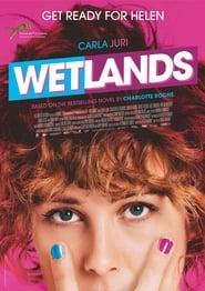 Poster Wetlands 2013