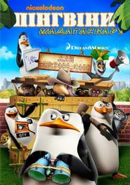 Пінгвіни Мадагаскару
