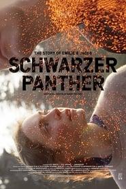Schwarzer Panther 2013