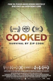 Cooked: Survival by Zip Code (2019)