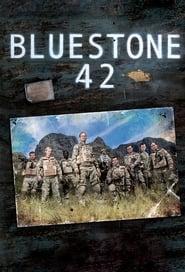 Poster Bluestone 42 2015