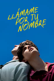 Call Me by Your Name [2017][Mega][Castellano][1 Link][1080p]