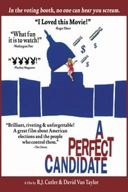 A Perfect Candidate 1996