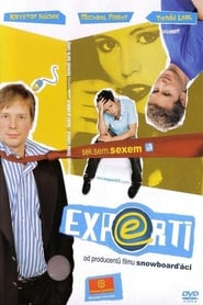 Poster del film Experti