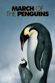 Poster March of the Penguins 2005