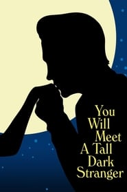 Poster for You Will Meet a Tall Dark Stranger
