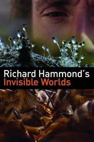 Poster Richard Hammond's Invisible Worlds 2010